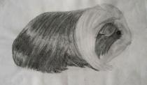 Jobb agyféltekés rajztanfolyam 35
