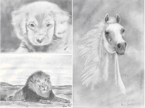A rajztanfolyamon készült rajzok